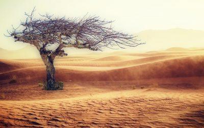 État de catastrophe naturelle dû à la sécheresse