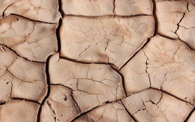 ÉTAT DE CATASTROPHE NATURELLE POUR LA FARE LES OLIVIERS – sécheresse pour la période du 1er juillet 2019 au 30 septembre 2019